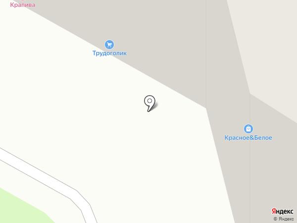 Трудоголик на карте Рязани
