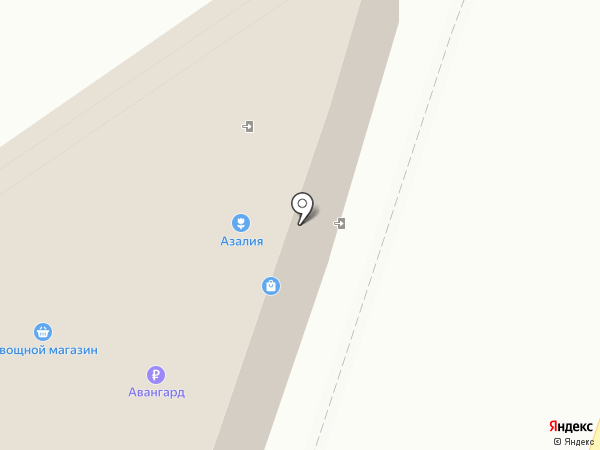 Магазин хозяйственных товаров на карте Рязани