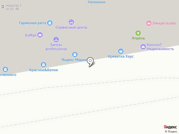 Алиса на карте Ростова-на-Дону