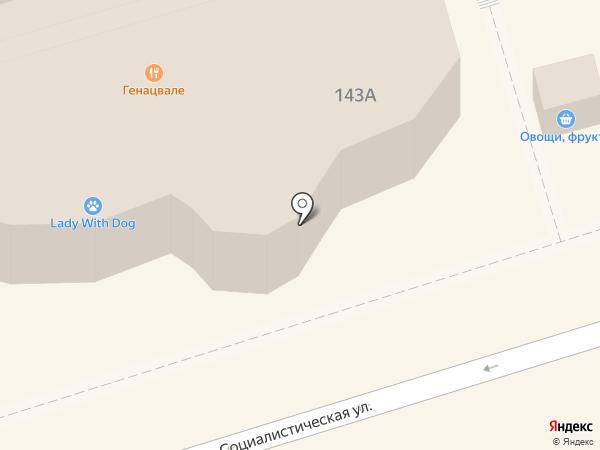 Чинар на карте Ростова-на-Дону