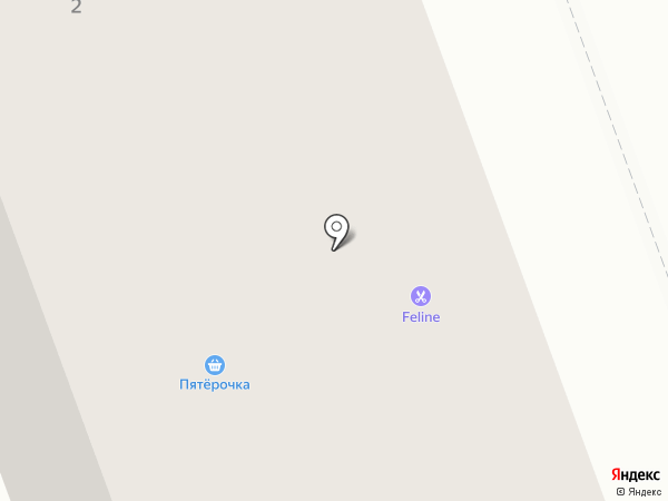 Пятёрочка на карте Северодвинска