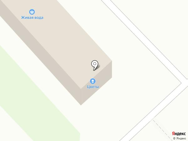 QIWI на карте Вологды