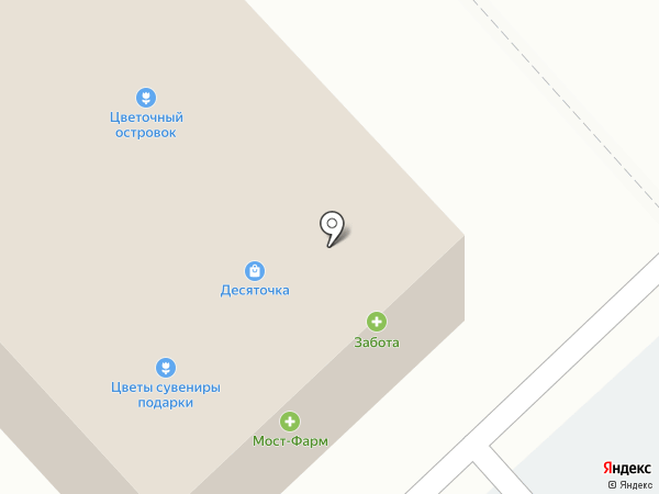 Алоэ на карте Вологды