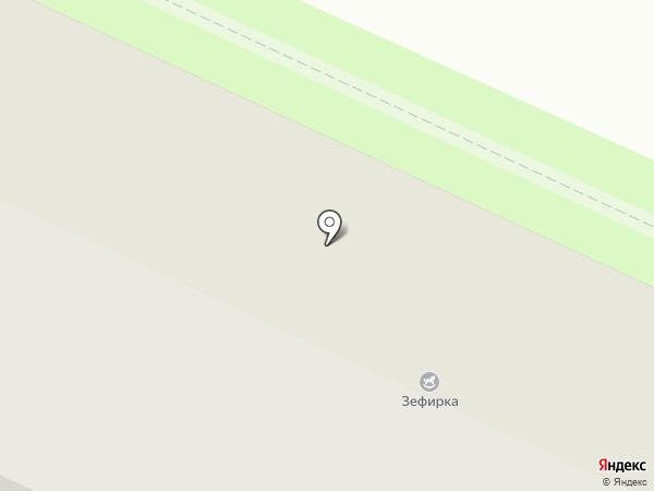 Две черепахи на карте Вологды