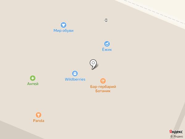 Котопесия на карте Вологды
