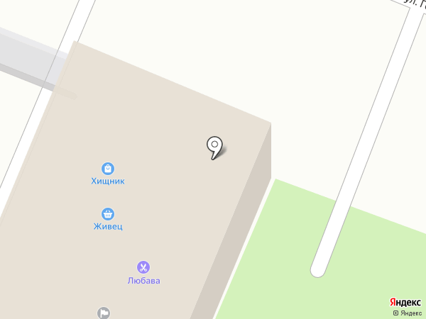 Хищник на карте Вологды