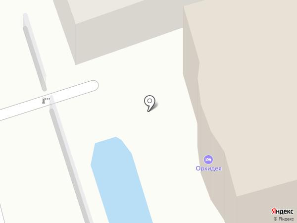Орхидея на карте Сочи