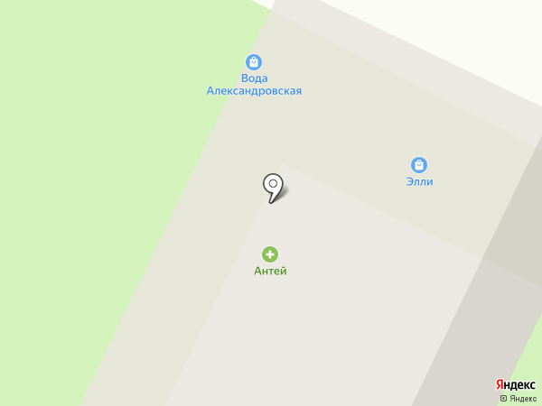 Элли на карте Вологды