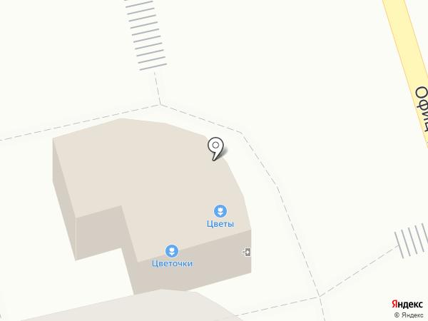 Цветочки на карте Владимира