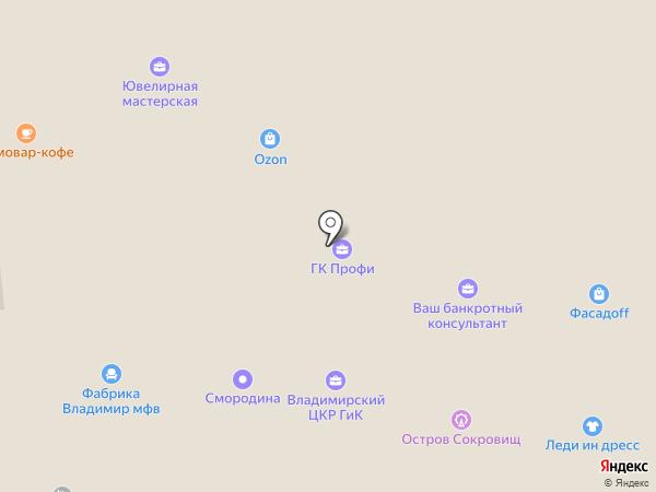 Умный город, АНО на карте Владимира