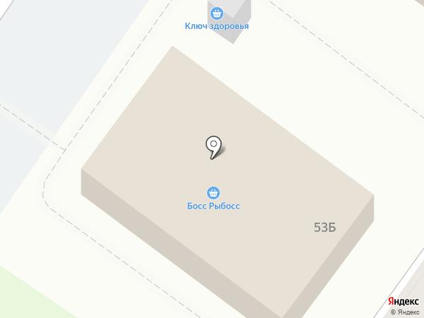 Куженька на карте Владимира