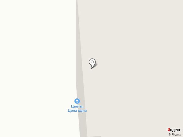 Сокол на карте Владимира