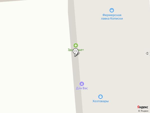 Мясная лавка на карте Владимира