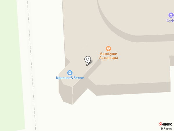 Трио на карте Владимира