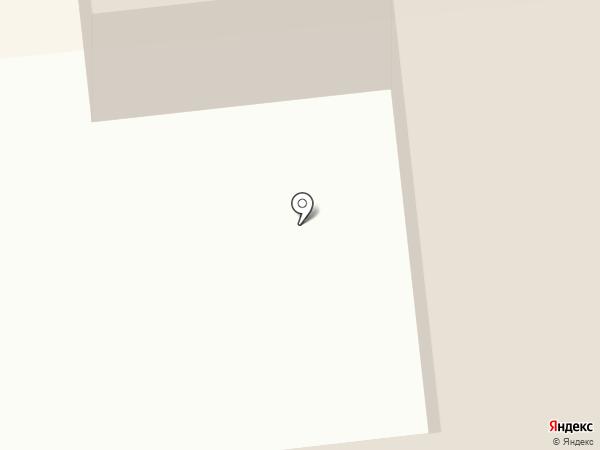 Пума на карте Новодвинска