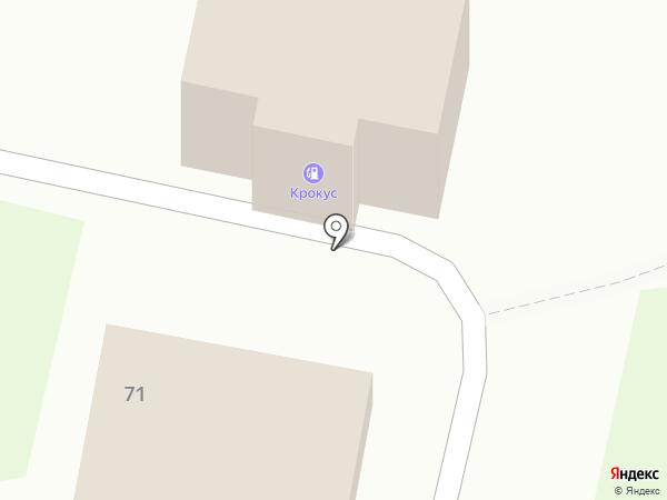 Крокус на карте Новокубанска