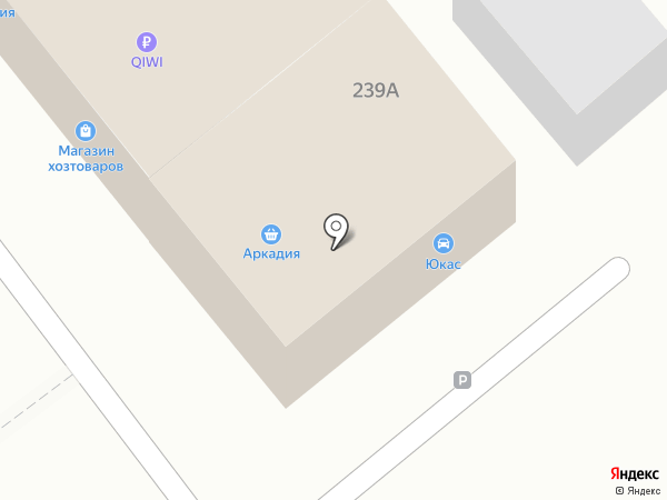 Аркадия на карте Новокубанска