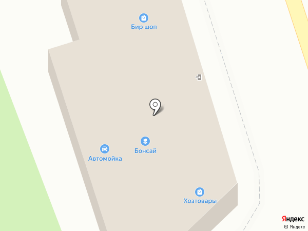 Бонсай на карте Тамбова