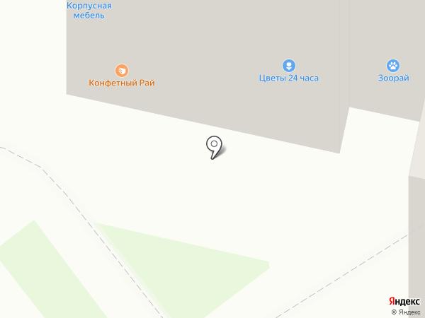 Torex на карте Тамбова