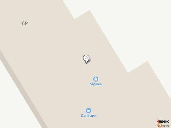 Дельфин на карте Тамбова