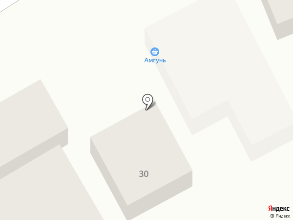 Амгунь на карте Тамбова