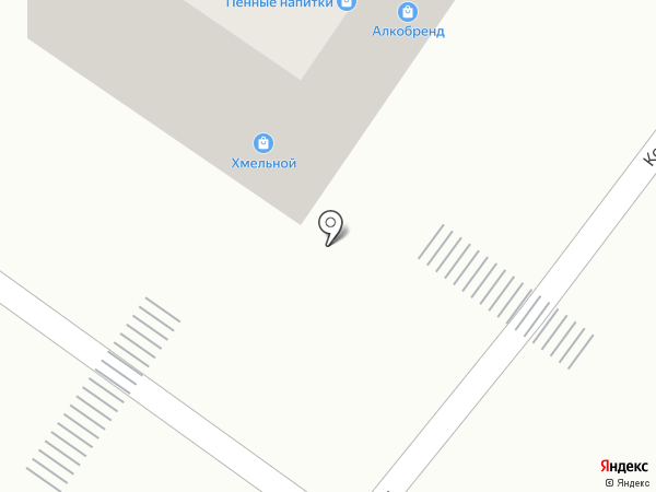 Хмельной на карте Тамбова