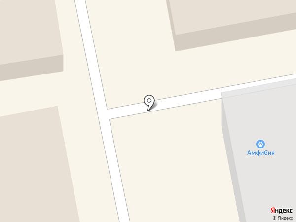 Модный пупс на карте Тамбова