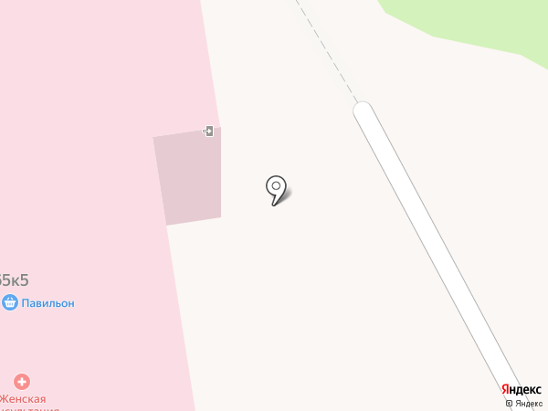 Женская консультация на карте Тамбова