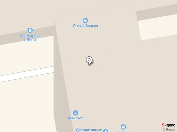 Электроник на карте Тамбова