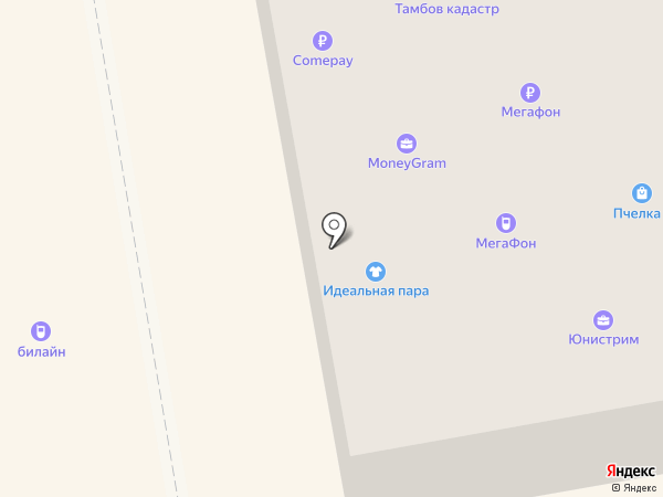 Билайн на карте Тамбова