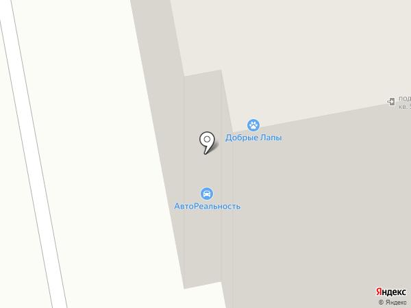 Четыре лапы на карте Тамбова