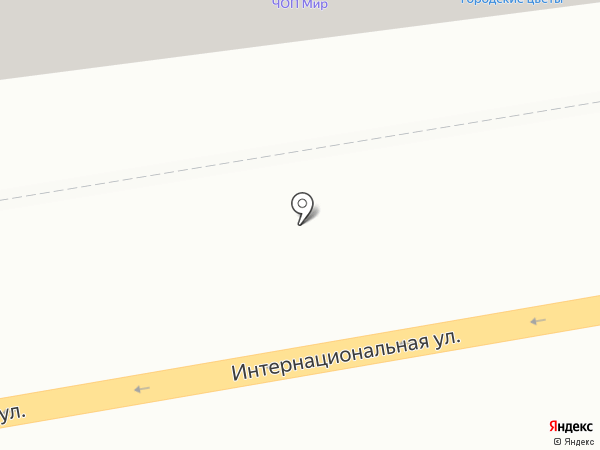 Медлаб на карте Тамбова