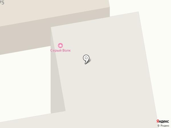 Серый волк на карте Тамбова