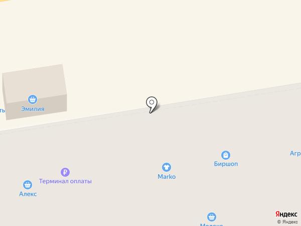Эмилия на карте Тамбова