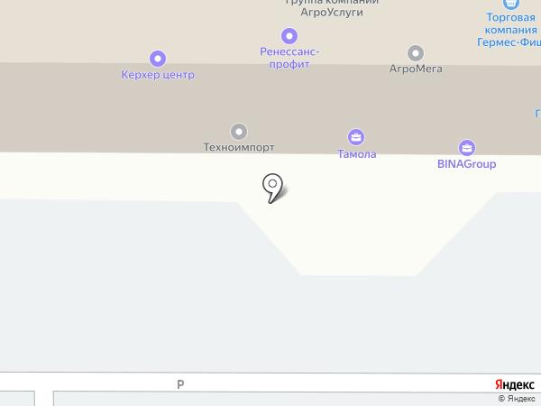 Русич на карте Тамбова
