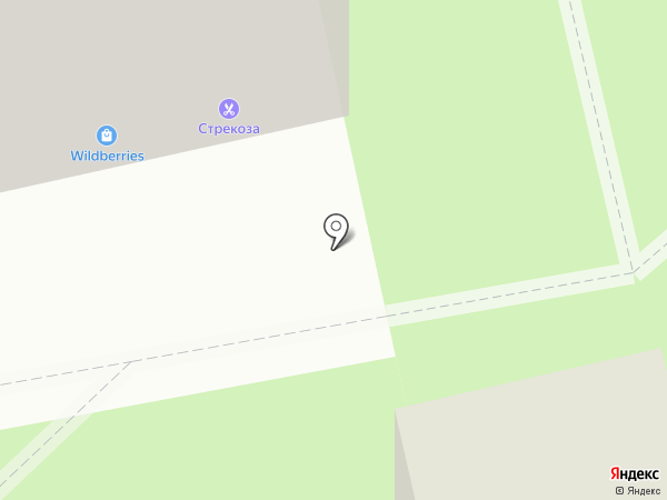Вера на карте Тамбова