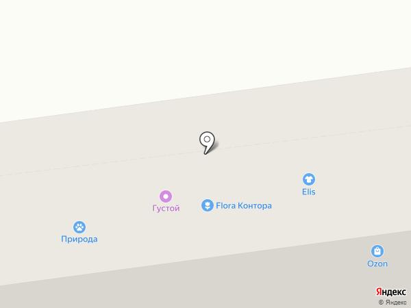 Пеона на карте Ставрополя
