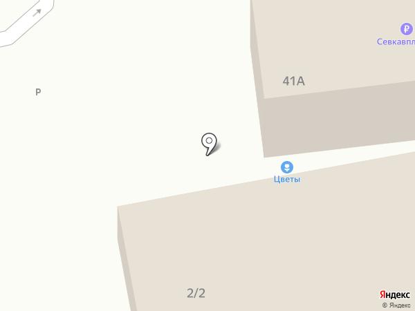 Ельсова на карте Михайловска