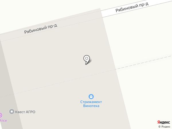 Бар-магазин на карте Ставрополя
