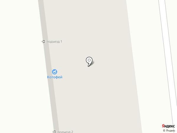 Котофей на карте Михайловска