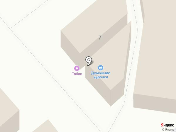 Домашние курочки на карте Ессентуков