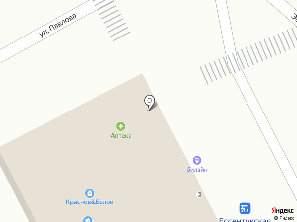 Канцпарк на карте Ессентукской