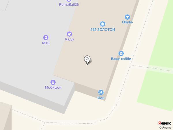 ИОН-Игрушки на карте Георгиевска