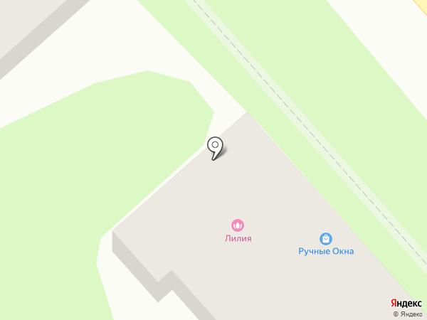 Лилия на карте Георгиевска