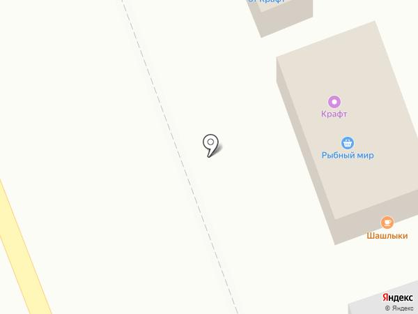Магазин фастфудной продукции на карте Богородска