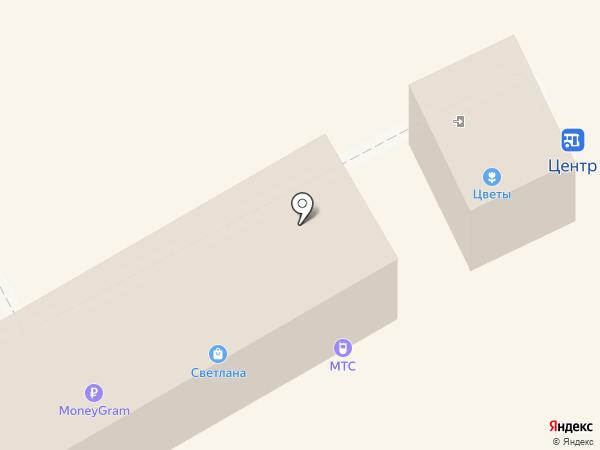 Светлана на карте Богородска