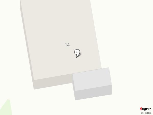 Стрижи на карте Новинок