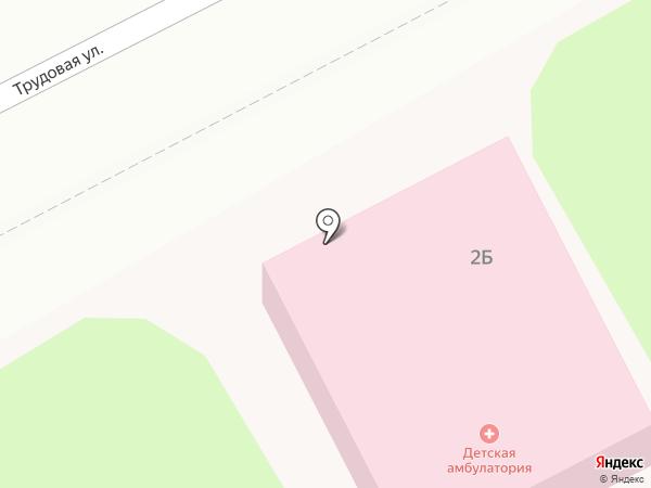 Неклюдовская детская консультация на карте Бора