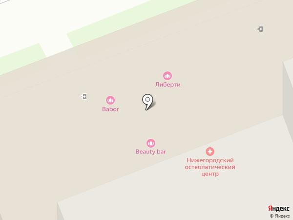 Нижегородский остеопатический центр на карте Нижнего Новгорода
