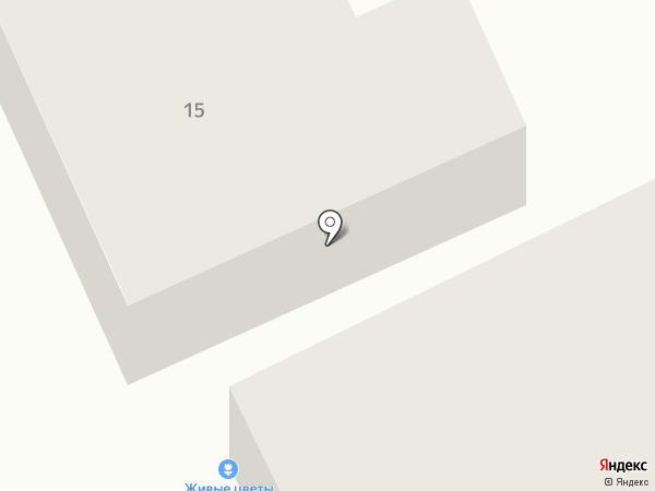 Alex Flowers на карте Бора